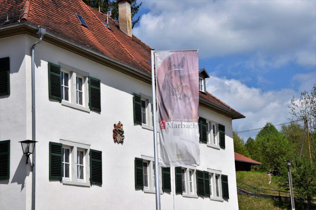 Haupt- und Landgestüt Marbach – Immer einen Ausflug wert!